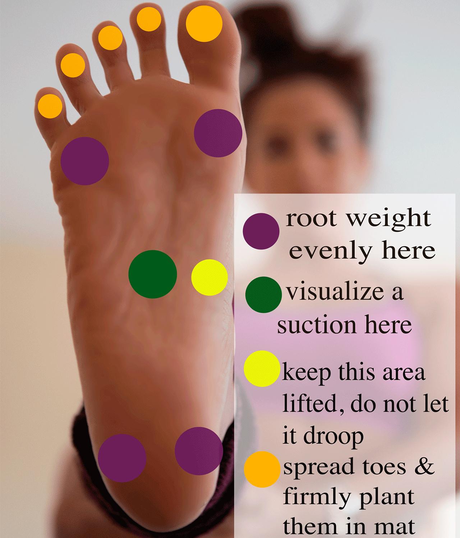 足の裏の重心をおくポイント