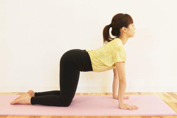 脊柱起立筋・腹筋群のストレッチ