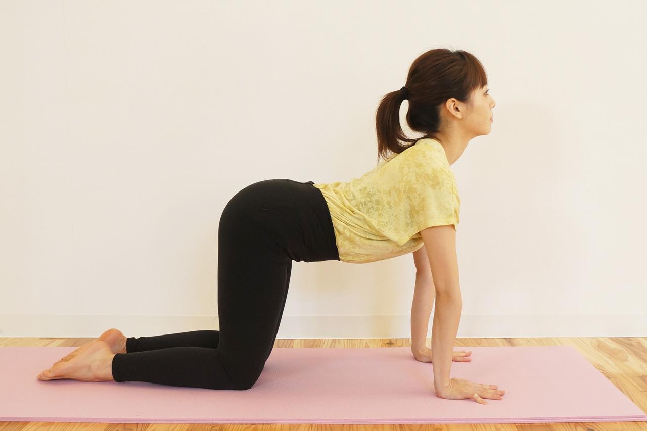 脊柱起立筋群・腹筋群のストレッチ